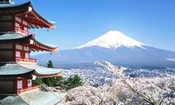 Что привезти из Японии в подарок: блик восходящего солнца на рукояти самурайской катаны