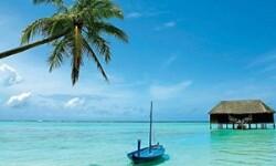 Как самостоятельно оформить визу в Шри-Ланку – особенности электронных заявок и милый аэропорт Коломбо