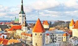 Что посмотреть в Таллине взрослым и детям: от Дома Братства Черноголовых до Японского сада
