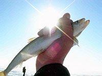 Зимняя рыбалка на Камчатке