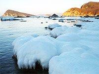 Незабываемое путешествие по Арктике