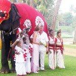 Шри-Ланка - свадьба