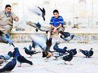 Что посмотреть туристам в Тель-Авиве