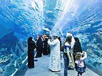 Что посмотреть туристам в Дубае