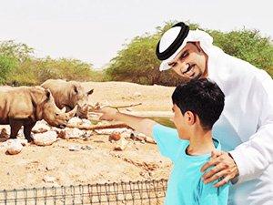 Зоопарк Аль-Айн - отзыв Зинаиды о поездке в Абу-Даби