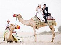 Организация свадебной церемонии в Египте