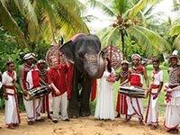 Сколько стоит свадьба в Шри-Ланке