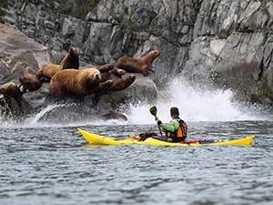 Активный отдых на полуострове Камчатка
